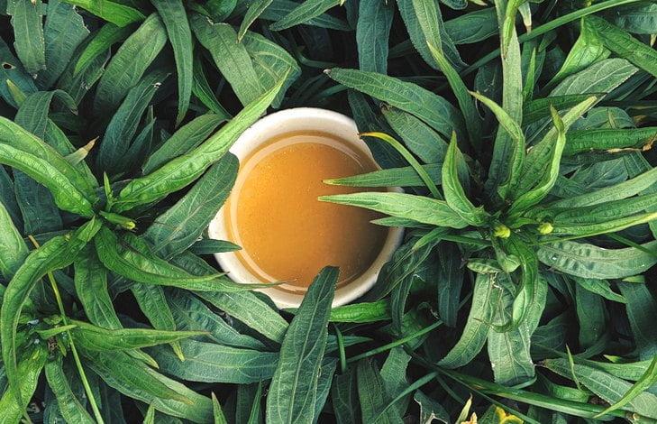 Полезные свойства гречишного чая